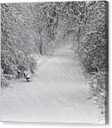 Winter's Trail Canvas Print
