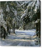 Winter's Tranquility Canvas Print