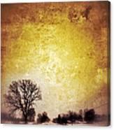 Wintery Road Sunrise Canvas Print