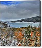 Wintry Dusting Canvas Print