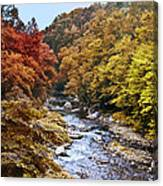 Wissahickon Creek In Fall Canvas Print