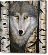 Wolf Beauty Canvas Print