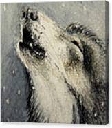 Wolf Cry...... Miniature Canvas Print