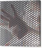 Woman Behind A Metal Mesh Canvas Print