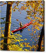 Woman Kayaking With Fall Foliage Canvas Print