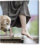Woman With A Skirt And A Dog Canvas Print