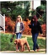 Women Walking A Dog Canvas Print