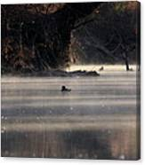 Wood Duck - On The Scenic Sucarnoochee River Canvas Print
