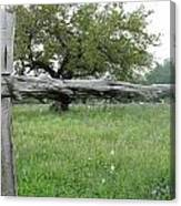 Wood Fence Canvas Print
