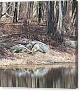 Wood Reflections Canvas Print