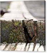 Wooden Board Canvas Print