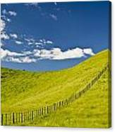 Wooden Fence Posts Running Through A Canvas Print