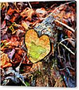 Wooden Heart Canvas Print