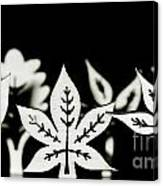 Wooden Leaf Shapes In Black And White Canvas Print