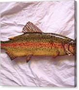 Wooden Rainbow Trout Number Nine Canvas Print