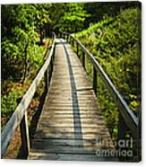 Wooden Walkway Through Forest Canvas Print