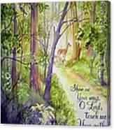 Woodland Walk Canvas Print