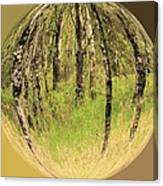 Woods In Crystal Ball Canvas Print