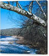 Wordens Pond Winter Canvas Print