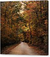 Wrapped In Autumn Canvas Print
