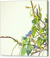 Wren And Damselfly Canvas Print