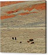 Wyoming Red Cliffs And Buffalo Canvas Print