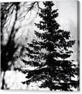 X-mas Tree Canvas Print