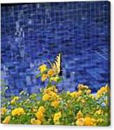 Yellow Against Blue Canvas Print