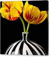 Yellow And Red Tulips Canvas Print