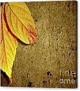 Yellow Fall Leafs Canvas Print