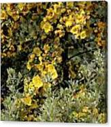 Yellow Flowers On Tree Canvas Print
