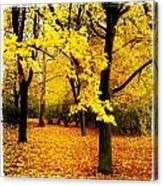 Yellow Park Canvas Print