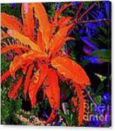 Yellow Plant 3 Canvas Print