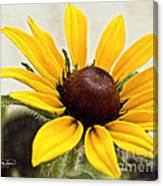 Yellow Punch- Artist Cris Hayes Canvas Print