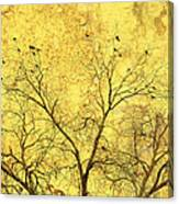 Yellow Wall Canvas Print