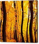 Yellow Wood Canvas Print