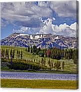 Yellowstone National Park Canvas Print