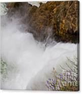 Yellowstone Waterfall Canvas Print