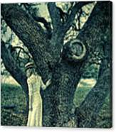 Young Lady In White By Tree Canvas Print