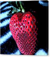 Zebra Strawberry Canvas Print