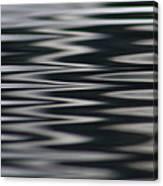 Zebra Waters Canvas Print