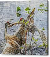 Zhandou Canvas Print