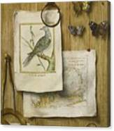 A Trompe L'oeil With Magnifying Glass Canvas Print
