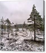 April Snow 1 Canvas Print