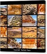 ' Australia Rocks ' - Maria Island - Tasmania Canvas Print