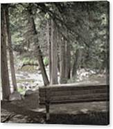 Bench By The Stream Canvas Print