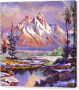 Breaking Winter Sunlight Canvas Print