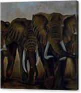 Elephant Herd Hurrying For A Drink Canvas Print