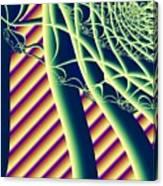Fabaceae Canvas Print