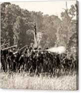 Gettysburg Union Infantry 9372s Canvas Print
